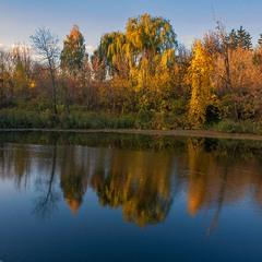 Згасання осені і дня
