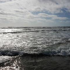 На узбережжі океану...