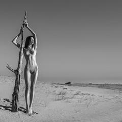 Пустынная-2