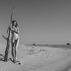 Пустынная