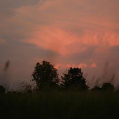 Вечір пише пейзажі