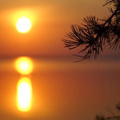 Краски летнего утра...