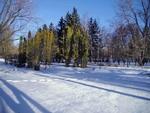 Зима со снегом голубым.