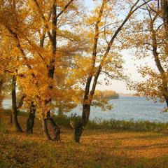 Завтра будет листопад.