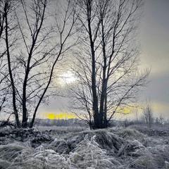 Зима, просветление.