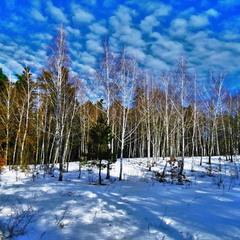 Морозно, солнечно, чудесный день!