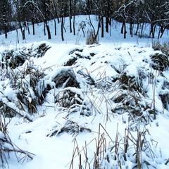 С неба насыпало снега немножко.