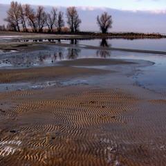 Вода отступила, дно обнажила.