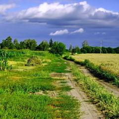 В поле за околицей...