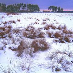 Зимний вечер в поле.