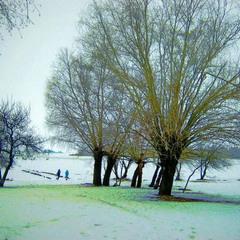 """Спозаранку проснуться и ахнуть, и крикнуть:""""Зима"""""""