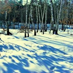 А в рощах голубые тени, лежат на мартовских снегах...