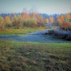 Осень голубою изморозью приукрасилась.