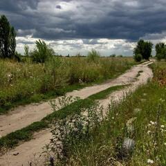 Дорога в поле.