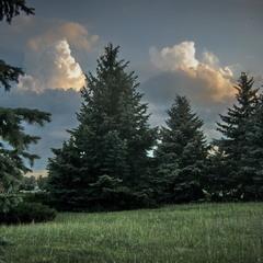 Вечерние облака.