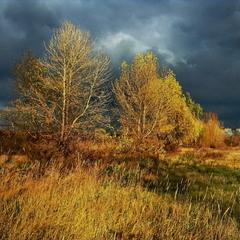 Пробудилась, разгулялась синяя непогода.