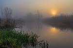 Ранковий туман