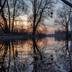 Вечоріло на озері. Київ. 03.04.2018