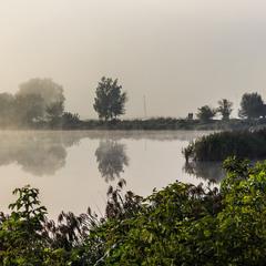 Ранковий туман на озері.