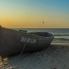 На березі ранкового моря