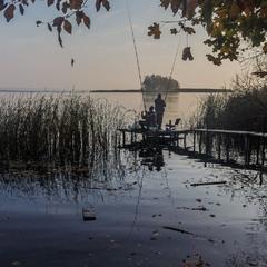 Рибний ранок