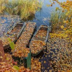 Осенний привал
