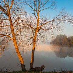 Світанок на озері.