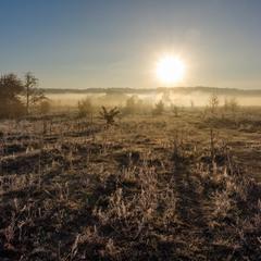 Ранковий туман.