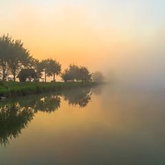 Дорогою в туман