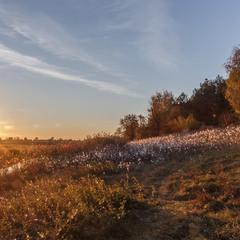 """Захід сонця з власником """"Миколиних туманів"""")"""