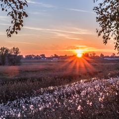 Захід сонця на р. Остер