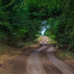 Дороги, дороги...)))