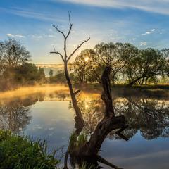 Ранковими берегами