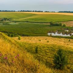 Українськими полями