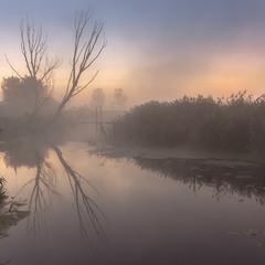 Туманно на річці.