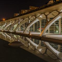 Город искусств и наук. Валенсия.
