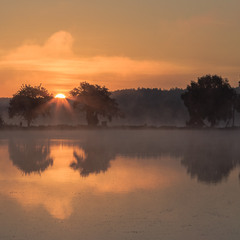 В променях ранкового сонця