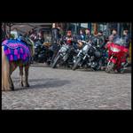 Кони разные нужны, кони разные важны:))