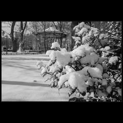 ..на память о зиме)