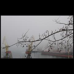 Туманная одесская весна..