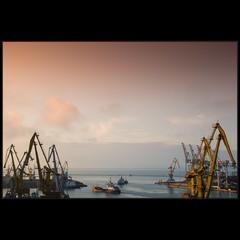 Родная гавань))