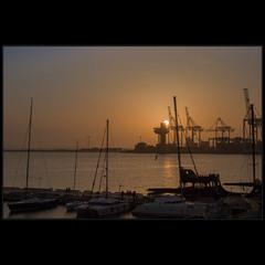 Утро в Одесском порту