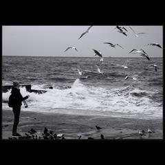 У моря..