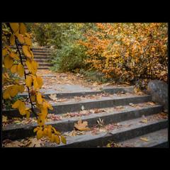 О старой лестнице..