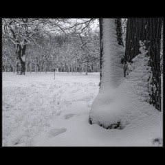 После снегопада..