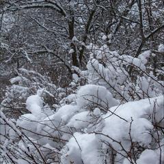 Про снег..