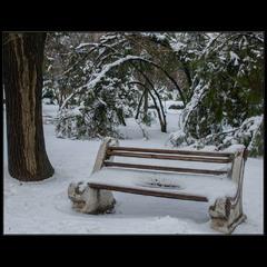 Зимне-парковая..