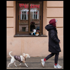 «Чай, собака, Пастернак; Кофе, кошка, Мандельштам»