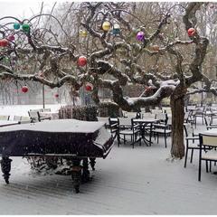 Рояль в снегу!