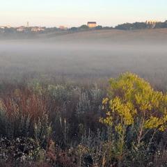 Утром в окрестностях Тилигульского лимана